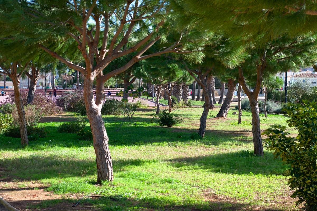 jardines paruque bassetes denia